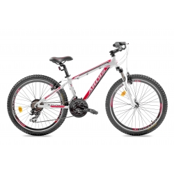 Bicycle ARDIS 24 MTB AL MAXUS