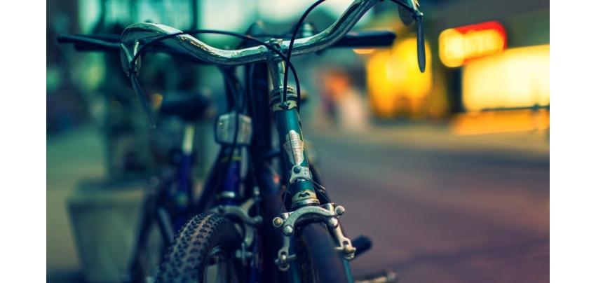 Bicycling, cycling, cycling